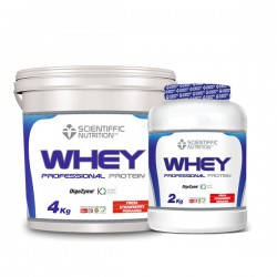 Whey Professional Protein Scientiffic Nutrition 4kgrs